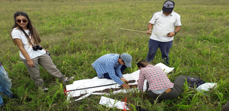 Evaluación de competencias en el área de riego y efluentes