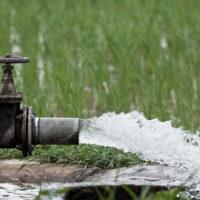 Custodiar el agua: un proyecto en Santa Lucía para la sostenibilidad del recurso